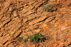 Stratified Rock. Close up of a cliff wall Stock Photos