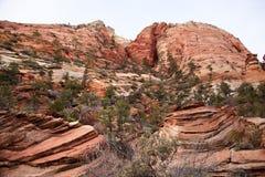 Stratified Rocks Zion Canyon National Park Utah Royalty Free Stock Photos