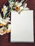 Strato bianco vuoto dell'album con i fiori leggeri Immagini Stock