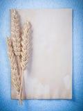 Strato d'annata della carta in bianco delle orecchie della segale su fondo blu v verticale Fotografia Stock