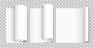 Strato di carta in bianco arricciato Raccolta di varia carta del rotolo illustrazione di stock