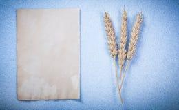 Strato di carta pulito d'annata delle orecchie del grano sul horizont blu del fondo Immagine Stock Libera da Diritti