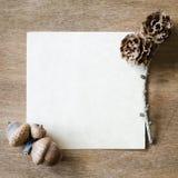 Strato di carta vuoto con le ghiande ed i coni Fotografia Stock