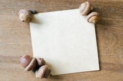Strato di carta vuoto con le ghiande ed i coni Immagine Stock