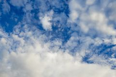 Stratocumulus cloud formations and a brilliant sky full of faces. royalty free stock image