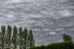 Stratocumulus clouds. Scenic view of stratocumulus cloudscape over forest stock photography