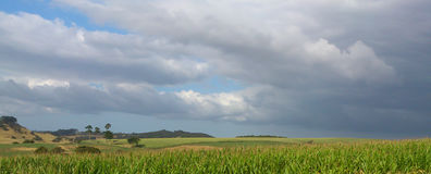 Stratocumulus clouds , Auckland. Royalty Free Stock Images