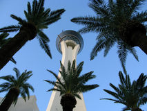 The Stratosphere Las Vegas. Is a hotel and casino located on the Las Vegas Strip in Las Vegas, Nevada as seen through surronding palm trees. The property's Stock Photo