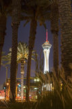 Stratosphere Tower and palm trees in Las Vegas, Nevada Royalty Free Stock Photo