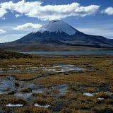 Stratovulcano van Parinacota Stock Afbeeldingen