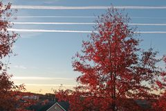 Stratus Clouds fill the Blue skyline in Northern NJ. Stratus Clouds fill the Blue skyline in Northern New Jersey. Trees are showing off their Fall Autumn Colors stock photo
