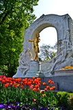 Strauss statua Fotografia Royalty Free