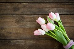 Bunch of tulips in pink on a brown wooden background royalty free stock photos