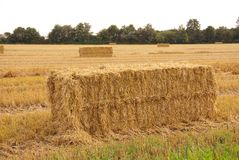 Straw. Bales at a field stock images
