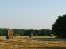 Straw. Bales at a field stock photos