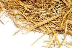 Straw Royalty Free Stock Photo