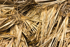 Straw. Close Up of straw used as animal-feed on a farm Stock Photography