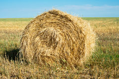 Straw. Bale of straw rests upon field Royalty Free Stock Photos
