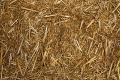Straw. Stack royalty free stock photos