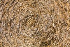 Straw Stock Photos