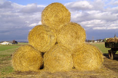 Straw. The big Bale of straw Royalty Free Stock Photos
