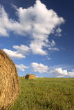 Straw. Bale of barley straw Royalty Free Stock Images