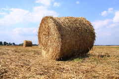 Straw. Postcard from Poland village, summer Stock Image