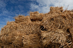 Straw. On a trailer Royalty Free Stock Photography