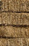 Straw alpaca. Alpaca hay for horse feed Royalty Free Stock Photo
