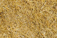 Straw as background Stock Photo