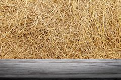 Straw backdrop and wood plank, straw wall, straw background texture, wooden floor plank table empty on dry rice straw wall Royalty Free Stock Images