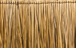 Straw background Royalty Free Stock Photography