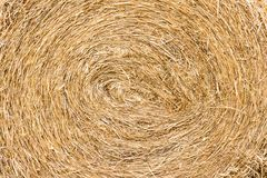 Straw. Is background Stock Image