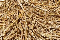 Straw background Royalty Free Stock Photos