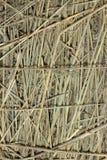 Straw background Royalty Free Stock Photo