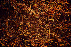 Straw Background Texture image stock