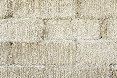 Straw background texture Royalty Free Stock Photo