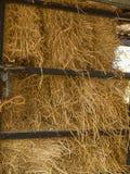 Straw background texture. Dry straw, straw background texture stock photo