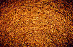 Straw Background Texture. Golden Yellow straw in sunlight Stock Images