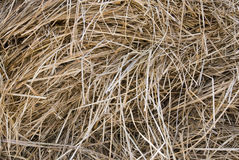 Straw backgrounds Royalty Free Stock Photos