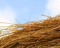 Straw bail Stock Photos