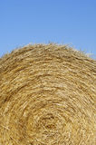 Straw bale Stock Photos