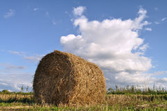 Straw bale Stock Photo