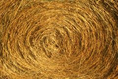 Straw bale. Brown straw bale in detail Stock Photos