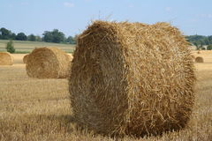 Straw Bale 8. Field of wheat straw bales Stock Photography