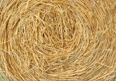 Straw bale Royalty Free Stock Photos