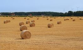 Field with straw bales after harvest. Straw bale architecture in crop filed summer stock image