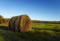 Straw bale in Autumn Field Royalty Free Stock Photography