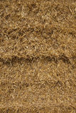 Straw bale background Royalty Free Stock Photo
