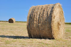 Straw bale on blue sky Stock Photography